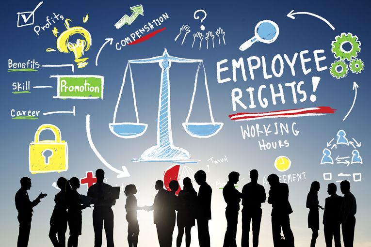 what are your rights without any contract of employment?